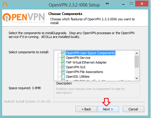 Windows üzerinde OpenVPN Client kullanarak b VPN